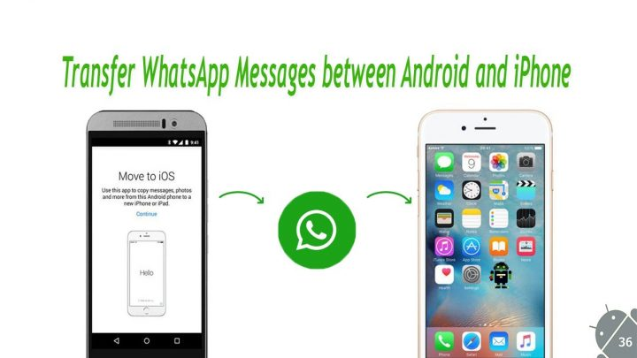 Migrate WhatsApp From iPhone To Android